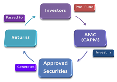 Knowledge | CAPM(Capital & Asset Portfolio Management) Company Limited